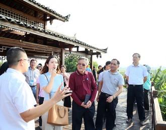 广西农业农村厅领导与外宾考察团一行到隆安考察现代农业